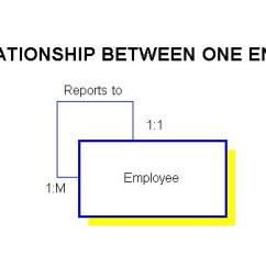One To Many Relationship Diagram 1962 Chevy C10 Wiring Understanding Relationships In E R Diagrams Some Involve Only Entity For Example Employee Reports