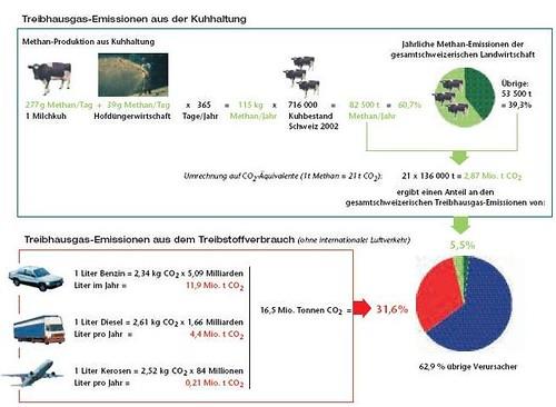 Hauptverursacher der CO2 Emission