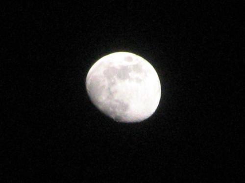 2007-01-29 006