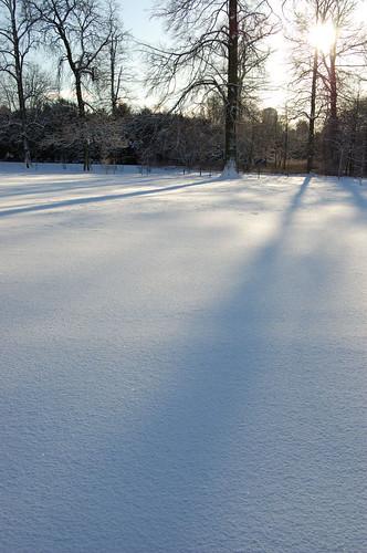 Shadows on snow