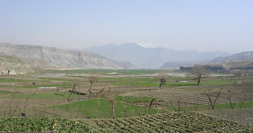 Afghan farms