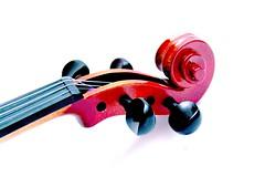 violin cabeza