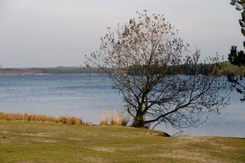 Rauwse meer