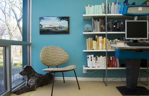 Sweet Juniper office