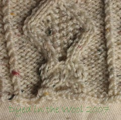 aran jacket rejected cable close up