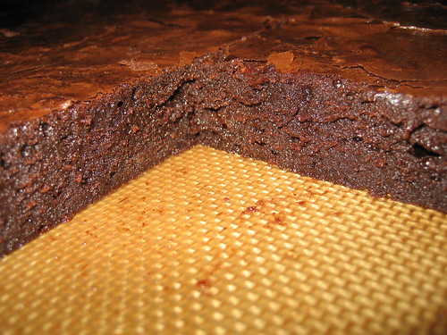 Brownie closeup