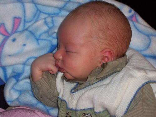 Baby Beau 2005