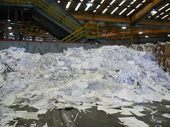 Sorted White Paper Pile