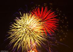 Clapham Common Fireworks