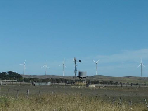 Australian Windmills