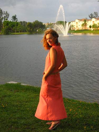Red Denim Dress