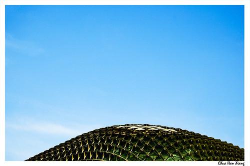 Esplanade-Durian-Head
