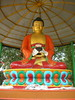 Buddha statue in the Tibetan monastery in Sarnath