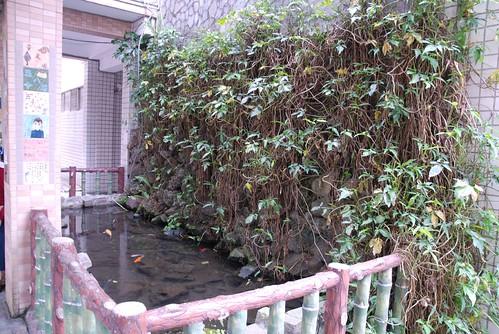 雙蓮國小-�池