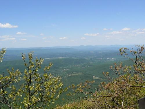 View From Thunder Ridge Overlook