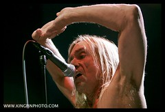 Iggy and the Stooges  _MG_4760.jpg