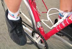 Socks du Jour: Fred Casts socks from Sock Guy
