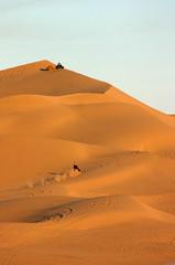 Sand Dunes, Yuma
