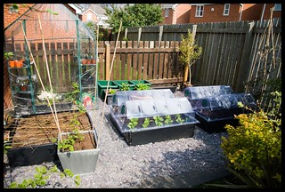 Garden/Allotment