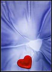 ₪ Mi Corazón - My Heart ₪