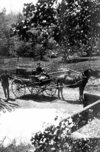 Jacob and Mollie Plummer with mule cart