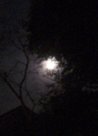Wesak Moon
