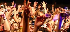 gig audience