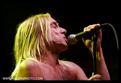 Iggy and the Stooges  _MG_4591.jpg