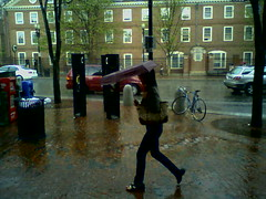 Rain in Cambridge