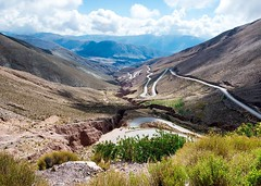 Day 607. This was the awesome road I descended from 14,000 feet to about 6,000 at Purmamarca. Currently I'm on something much flatter, bordered by farms, and swarming with insects. I left my shoes out of my tent last night and found a near-palm-size spide