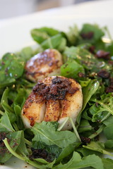 Wilted Arugula Salad with Scallops and Hot Bacon Vinaigrette 2