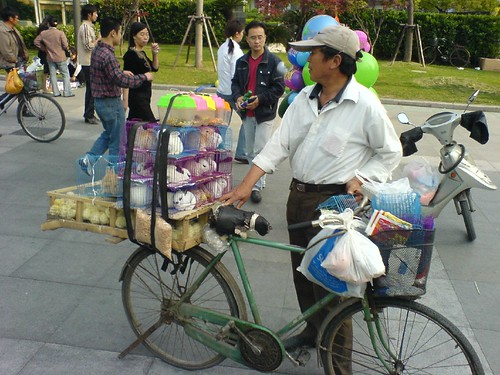 Pets for Sale Outside Zhongshan Park