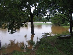 Kollibacchalu Dam -Malenadu Heavy Rain Effects Photography By Chinmaya M.Rao   (126)