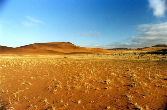Désert de Namibie par Nomad Photography
