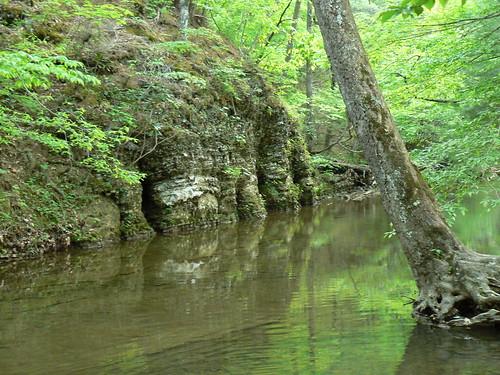 Creek at Caldwell Fields