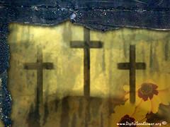 Urban Crosses