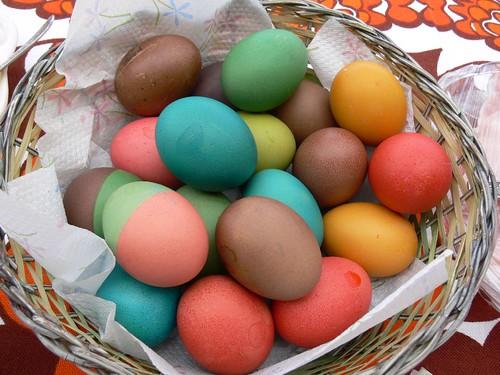Colourful Boiled Eggs