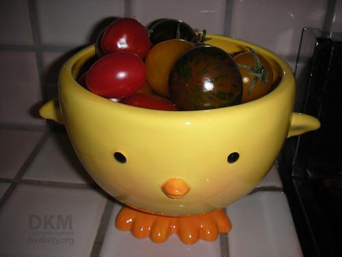 Peep with heirloom tomatoes