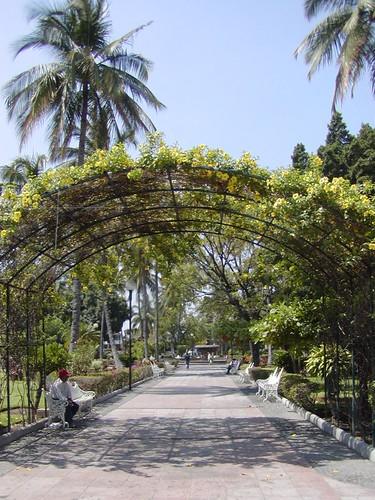 colima mayo 200701