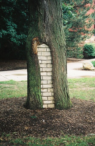 brick tree