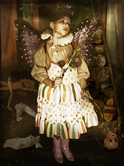 The Faery Queen's Justice