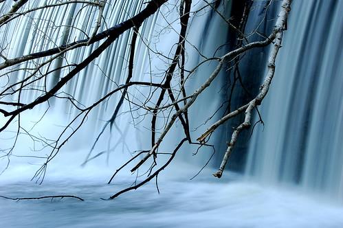 Milburnie Dam #1