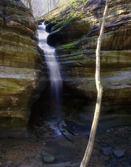 Matthiessen Dream