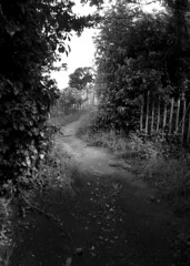 The end of the path along Redhill/Storeton