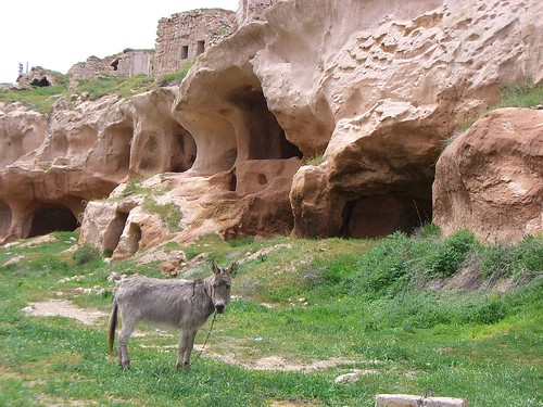 Rock formations (and goat) in Urgup