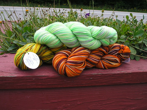 Yarn from Scout