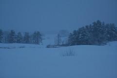 snowapril_stillsnow