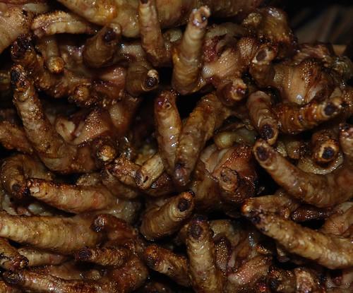 Stickyrice Ugly Food