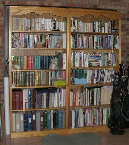 Two of our four bookshelves