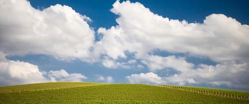 Blue Skys-9765.jpg